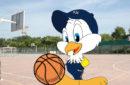 Baby Basket SJE