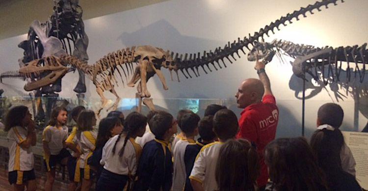 Excursión-3º-Primaria-Museo-Ciencias-Naturales-2017