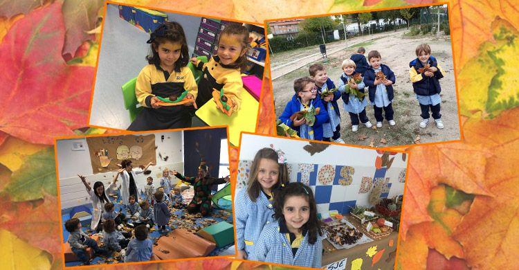 Fiesta-del-Otoño-en-Infantil-2017